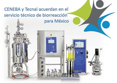 biorreactor.png