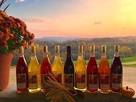 View At Tenba Ridge Winery Blair WI USA