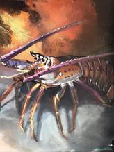 Florida Spiny Lobster.jpg