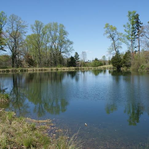 Villevue Pond