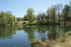 Villevue Pond G5.JPG