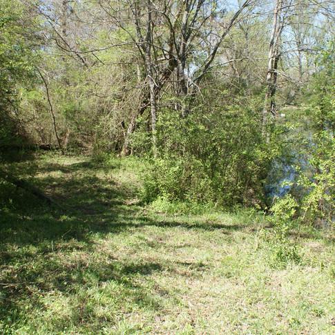 Villevue Pond Trail