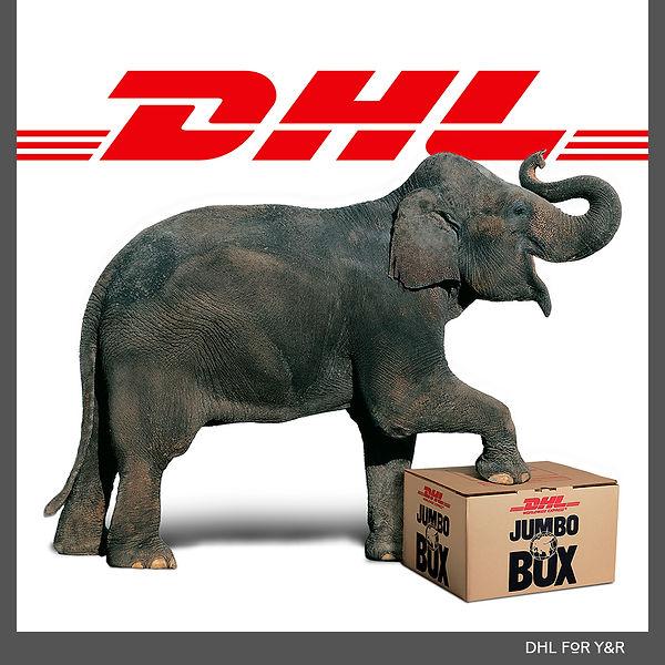 DHL 1000 new.jpg