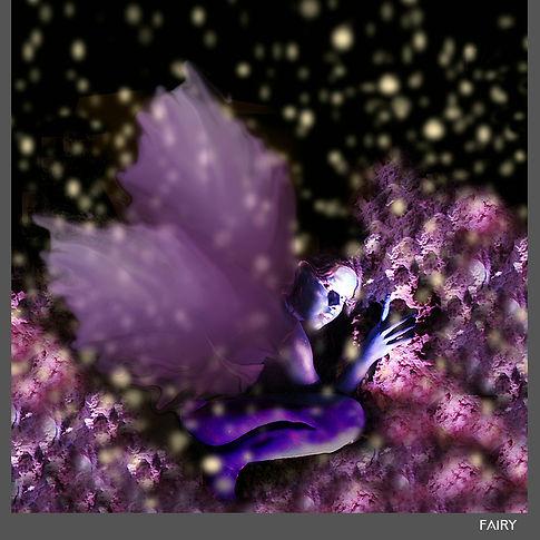 Fairy 1000.jpg