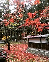 秋散策.jpg