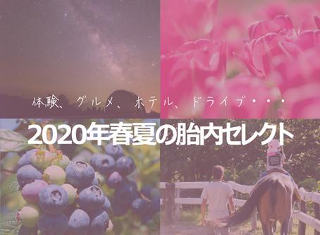 2020年春夏観光特集ページ公開!