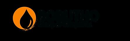 Borutho Logo  for E News.png