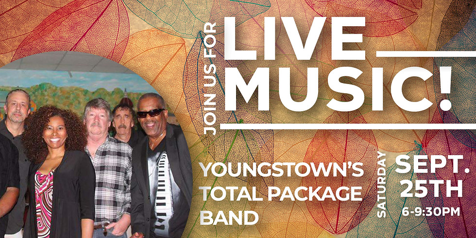 Live Music from Youngstown's Total Package Band