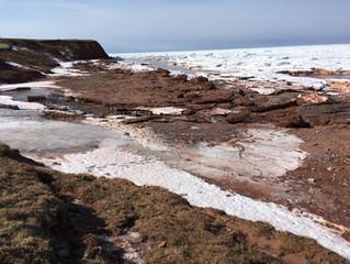 The beach in February