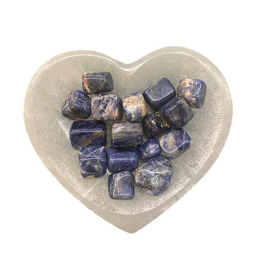 Sodalite Tumble One Stone