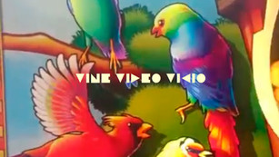 VINE,VIDEO,VICIO