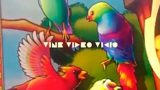 VINE,VIDEO,VICIO