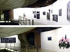 AQUÍ -4 fotógrafos desde Madrid-