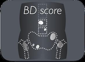 BD-Score.png