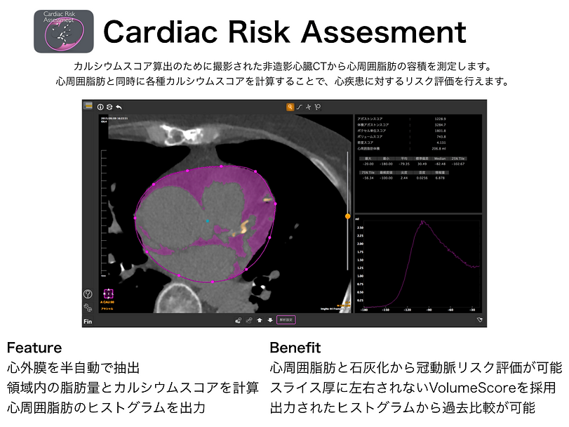 Cardiac Risk Assesment