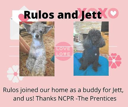 Rulos and Jett.jpg