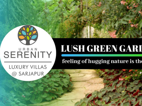 Lush green garden at Serenity with 22 amenities