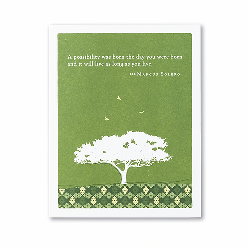 """Positively Green - Marcus Solero """"A Possibility Was Born The Day You Were..."""""""