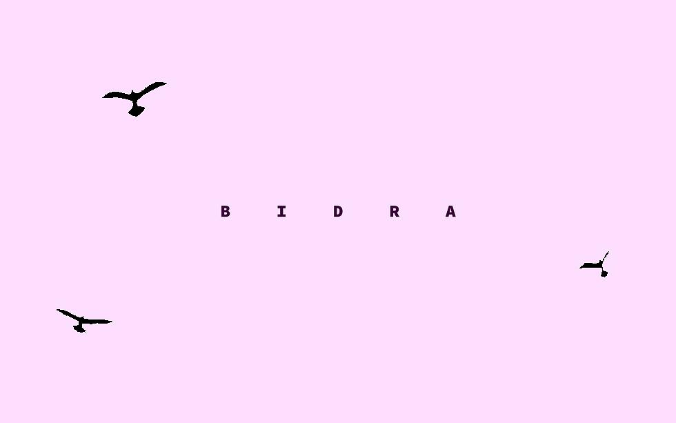 HEMSIDA bidra_Rityta 1.png