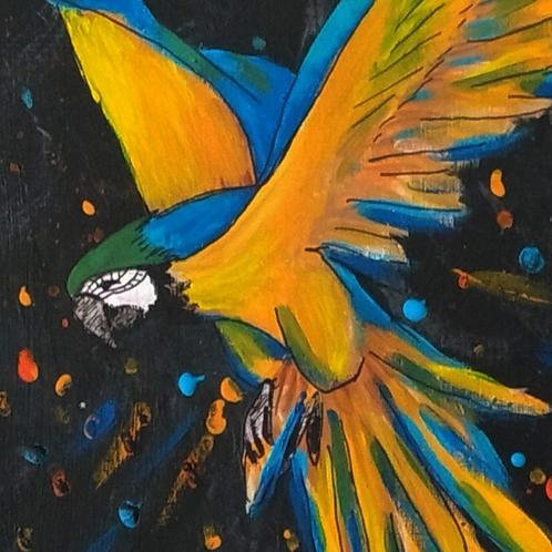 Pintura em papel de ARARA - Canindé fugindo das chamas
