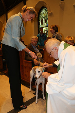 Blessing of the Animals, Oct. 2015
