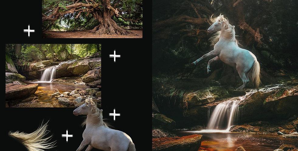 Photolegend Meets Mystic Moments 2.0 / Der Photoshop Abend