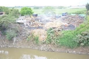 Sampling site in Colombia