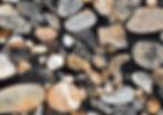 Trek-detail.jpg