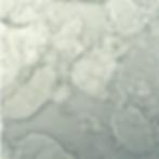 Nickel Silver.png