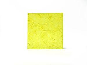 SA025 Yellow.jpg