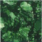 Platina Green.png