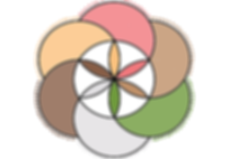 graine_de_vie_complète_site.png
