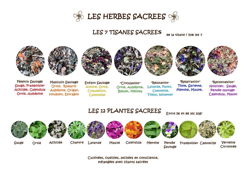 les_herbes_sacrées.png