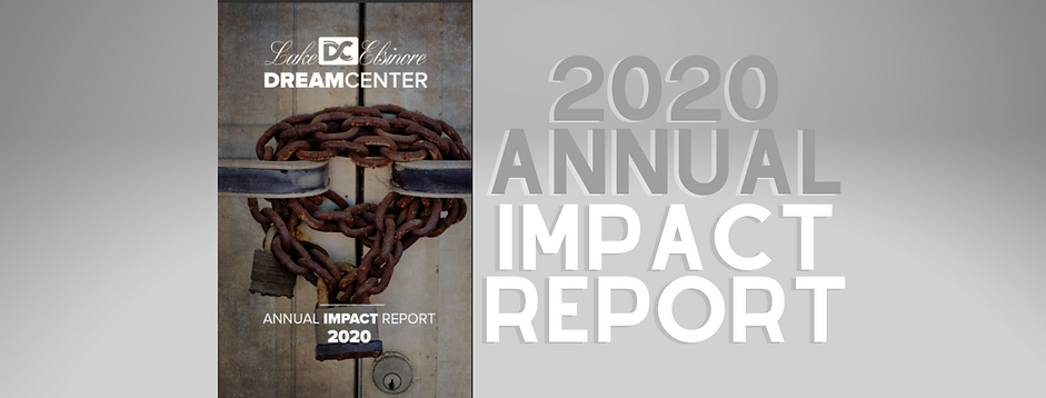 2020 Annual Impact Report Website Banner