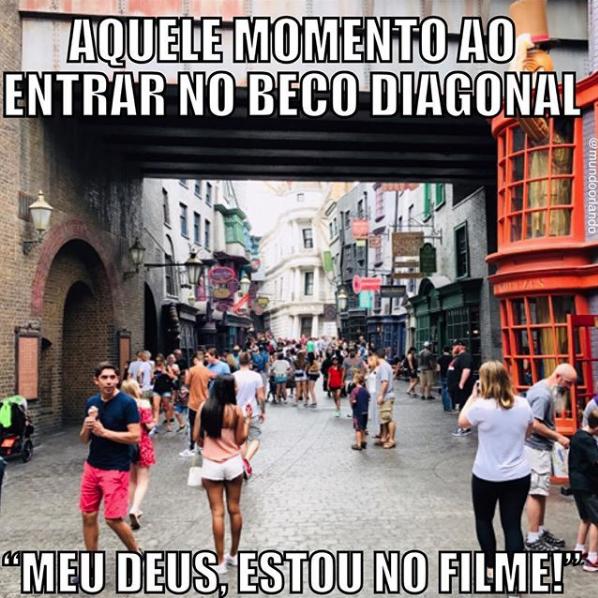 beco diagonal, meme, meme harry potter, meme hp, meme beco diagonal