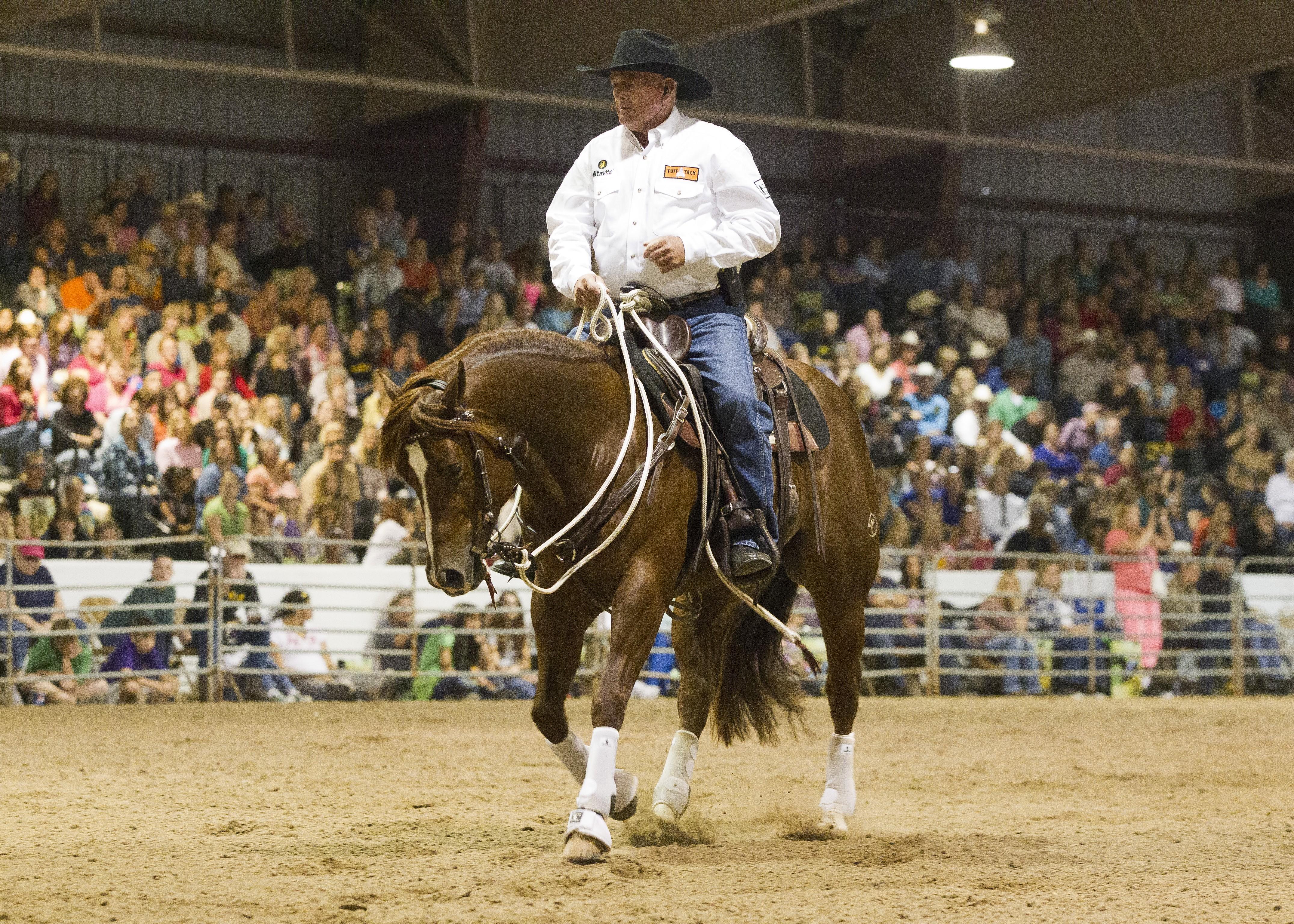Ian Francis Horsemanship 1