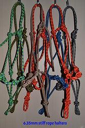 rope halter training ian francis horsema