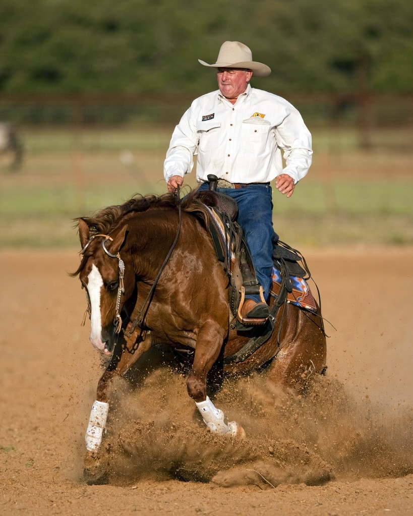 Ian Francis Horsemanship 5