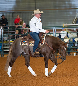 Ian Francis Horsemanship at Downunder Horsemanships Ranch Rally