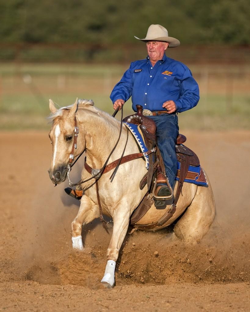 Ian Francis Horsemanship 6