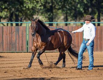 Two Aussie Legends, Clinton Anderson, Downunder Horsemanship, Queensland, QSEC