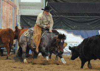 ian francis horsemanship - on bend 2