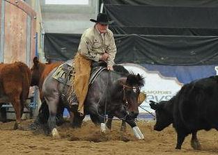 ian francis horsemanship - on bend 2 .jp
