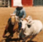 Ian Francis Horsemanship 12_edited.jpg
