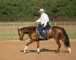 Ian Francis Horsemanship 4