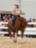ian francis horsemanship educate your ha