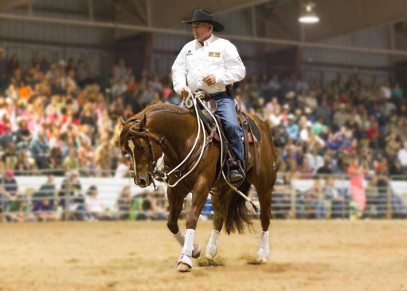 Ian Francis Horsemanship Ian Francis at Clinton Andersons Tampa Walkabout Tour