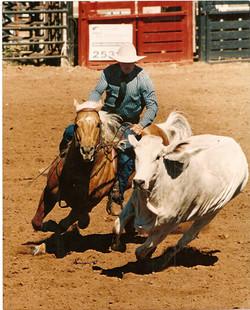 Ian Francis Horsemanship 12