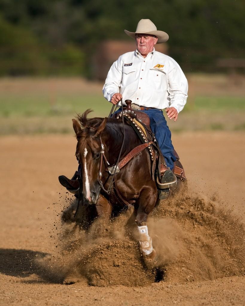 Ian Francis Horsemanship 3