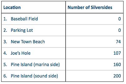 Nearshore Fish_Atlantic Silverside_Table